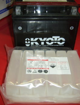 Battery-Kyoto-YTX20-BS