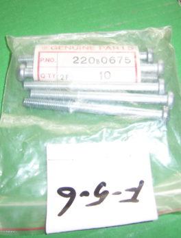 Kawasaki-Bolt-220B0675