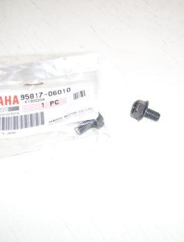 Yamaha-Bolt-flange-95817-06010