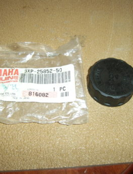 Yamaha-Cap-reservoir-3XP-25852-50