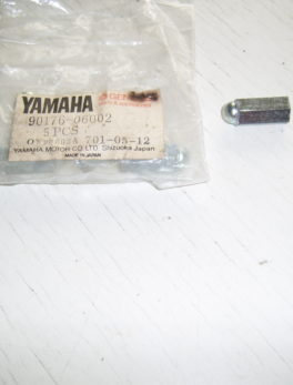 Yamaha-Nut-crown-90176-06002