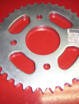 Yamaha-Sprocket-1A1-25438-20